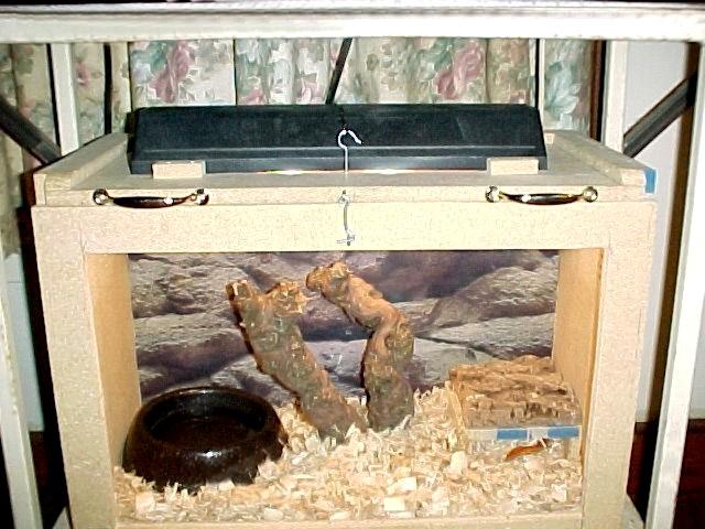 Home-made tank